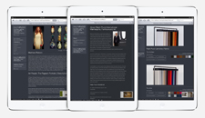 Ralph Pucci Website Design & Build